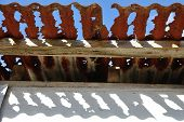 stock photo of derelict  - rusted out iron roof on derelict farm building Gardiner Rd Cowaramup Western Australia - JPG