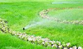 stock photo of sprinkling  - sprinkler water on the green grass lawn - JPG