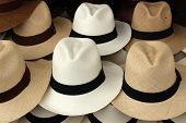 stock photo of panama hat  - Handmade brown  and white panama hats for sale at the outdoor craft market in Otavalo - JPG