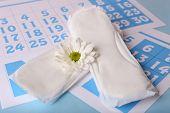 foto of menses  - Sanitary pads - JPG