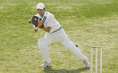 picture of ball cap  - Cricket wicketkeeper catching a ball behind stumps - JPG