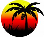 picture of banana tree  - banana tree sunset summer holiday and sunset background - JPG