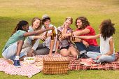 pic of friendship day  - Happy friends in the park having picnic on a sunny day - JPG