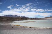 Постер, плакат: Laguna Honda in Atacama Desert in Bolivia