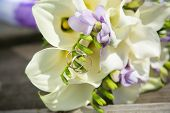 stock photo of calla  - bridal bouquet with white callas and wedding rings - JPG
