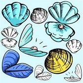 A set of 5 vector illustrations of mussels and clams in color, and black and white renderings.