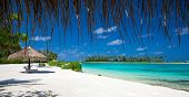 sea in Maldives. tropical beach in Maldives with  blue lagoon poster