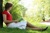 Постер, плакат: Книга читать женщиной в парке