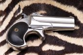 stock photo of derringer pistol  - â�?��?Circa 1889, Model 95, Type II Model 3 Double Derringerâ�?� lays ontop of Real Zebra Fur - JPG