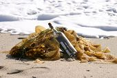 message in a bottle laying in sea weed