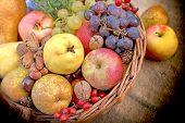 Autumn Organic Fruit, Seasonal Organic Fruit In Wicker Basket, Autumn Harvest On Table poster
