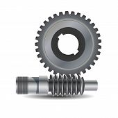 Worm Drive. Vector Diagram. Protrusion On The Gear Wheel Enter The Worm Shaft To Form A Gearing Syst poster
