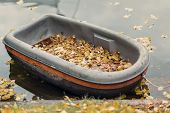 Moored Dirty Boat In The Autumn Pond. Autumn Scene, Fallen Yellow Leaves On The Shore, Real Scene, R poster