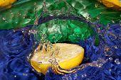 pic of crown green bowls  - Splash with fresh mandarin - JPG