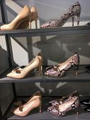 Many different of woman fashion shoes and snake designed shoes on shelves. Variety of lady shoes on  poster