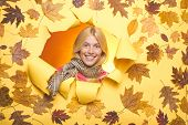 Attractive Young Woman Wearing In Fashionable Seasonal Clothes Having Autumnal Mood. Autumn Blonde G poster