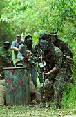 picture of gun shot wound  - Picture of paintball battalion ready for the game - JPG