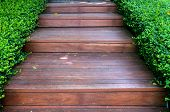 Wood Stair Way On Green Garden