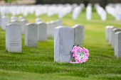 stock photo of arlington cemetery  - Arlington National Cemetery  - JPG