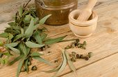 stock photo of naturopathy  - Still life displaying eucalyptus as a natural medicine ingredient - JPG
