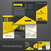 pic of booklet design  - Professional business three fold flyer template - JPG