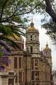 foto of guadalupe  - Old Basilica of our Lady of Guadalupe being framed by trees in Mexico City - JPG