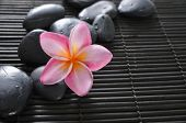 stock photo of frangipani  - Pink frangipani with spa stones on bamboo mat - JPG