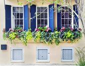 image of quaint  - The street front of an old town house built in the seventeen hundreds in Charleston South Carolina - JPG