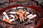 picture of vertebrae  - smoking cigarettes in pub - death, vertebra