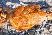 pic of spit-roast  - Chicken roasted on a spit in the nature