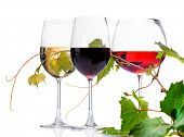 stock photo of merlot  - Wine - JPG