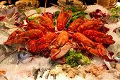 image of norway lobster  - Lobsters crabs and fish mixture crustaceans exhibited - JPG