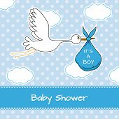 pic of stork  - Baby boy arrival announcement card - JPG