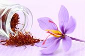 picture of saffron  - Close up of saffron flower and dried saffron spice  - JPG