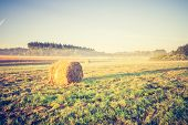 image of hay bale  - Beautiful meadow landscape with hay bales and morning fog at sunrise - JPG