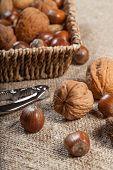 foto of nutcracker  - Set of nuts with a nutcracker - JPG