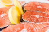 picture of salmon steak  - Salmon - JPG