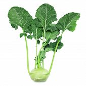 stock photo of kohlrabi  - Fresh kohlrabi with green leaves on isolated white backround - JPG