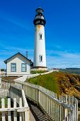 foto of pigeon  - Pigeon Point Lighthouse in California - JPG