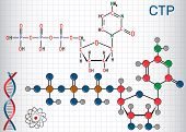 Cytidine Triphosphate (ctp) Molecule, It Is Pyrimidine Nucleoside Molecule. Structural Chemical Form poster
