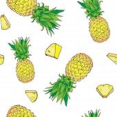 Vector Hand Drawn Abstract Tropical Seamless Pattern Of Exotic Fruit Pineapple With Pieses. Ananas I poster