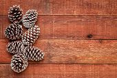 decorative, frosty white painted, pine cones on a weathered barn wood with a copy space poster