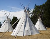 image of teepee  - three traditional teepees grouped together - JPG