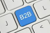 Blue B2B (business to business) button