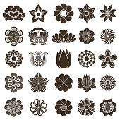 picture of outline  - Vintage flower buds vector design elements isolated on white background - JPG