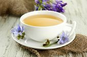 stock photo of chicory  - Cup of tea with chicory - JPG