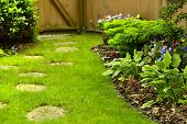 pic of curvaceous  - A beautifully back yard with stepping stones - JPG