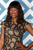 LOS ANGELES - JAN 13:  Aisha Tyler at the FOX TCA Winter 2014 Party at Langham Huntington Hotel on J