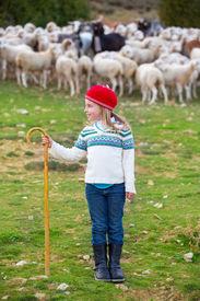 stock photo of shepherdess  - Kid girl shepherdess happy with flock of sheep and wooden stick in Spain - JPG
