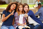 stock photo of 16 year old  - Female High School Students Taking Selfie On Campus - JPG